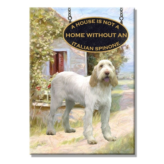 Italian Spinone a House is Not a Home Fridge Magnet No 1