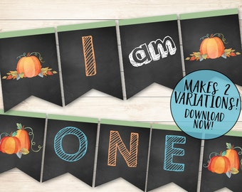 Boy Pumpkin Birthday Banner, Our Little Pumpkin Banner, High Chair One Banner, Pumpkin High Chair Banner, Birthday High Chair Banner