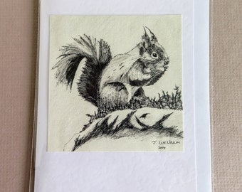 Hungry Red Squirrel Greetings Card