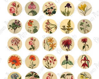 1 Inch Round Botanical Flower Graphic Image Download // Instant Download // Scrapbooking Digital Collage Sheet