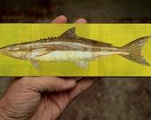 "Medium Saltwater Fish Art Block- Cobia Print- 9""x3"" Fish Wall Decor Fisherman Gift for Husband Gift- Beach House Decor- Fish Gifts"