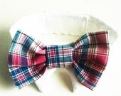 Holiday Dog Bow Tie For That Special Pet That Deserves The Best Easter Bow tie pastel plaid hipster Instagram Twitter photo prop