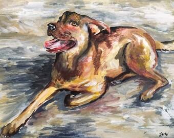 Custom Pet/Animal Portrait Paintings