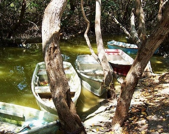 Fishing Boats on the Ria Celestun. Mexican Lifestyles.