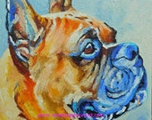 """Original Boxer Dog Oil Painting 10""""x10"""" pet portrait painted by knife by me Sandra Spencer"""