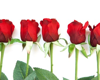 """ONE Budded Rose in Red on 24"""" Stem - Artificial Silk Flowers - ITEM 050"""