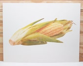 Vintage School Poster National Dairy Council Print Ear Of Corn Vegetable Photo 1986