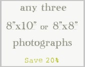 Set of Three Photography Prints - 8x8 or 8x10