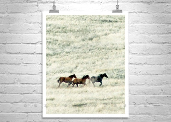 Horse Photography, Galloping Horses, Prairie Photography, Horse Print, Horse Art, Wild Horses, Ranch Picture, Western Picture, Horse Picture