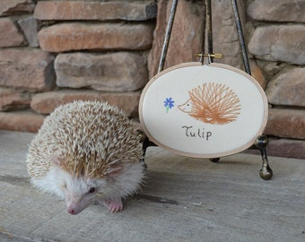 Personalized Embroidered Hedgehog