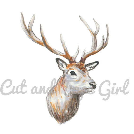 Basket Weaving Supplies Toronto : Deer clip art stag and doe clipart hand drawn woodland