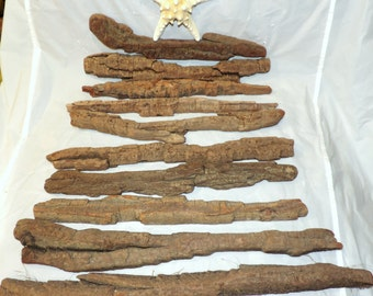 14-22 inches long Wood bark Natural Driftwood Lot of 10 pieces / for home decor or any project /  U17