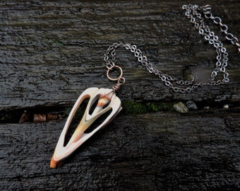 Shell Slice Necklace