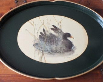 Lady Clare famous tray depicting Marsh Stage Duck in Green & Gold excellent condition