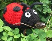 Ladybug turtle sweater. Crochet ladybug, turtle marker, turtle costume
