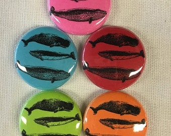 WHALES Magnet or Pinback Button 1""