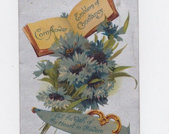 vintage  1909  greetings post card Berwick, Pa.