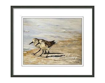 bird art Sanderlings PRINT ocean water beach shorebirds sand wildlife