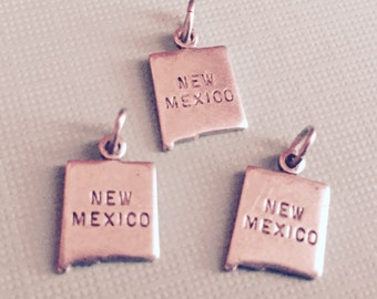 New Mexico State Charm Pendant with Loop, Antique Silver, Great for Charm Bracelets, Necklaces, Earrings