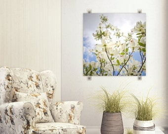 Dogwood Flower Photography, White Blue Nature Photography, Tree Blossom Art, Spring Blooms, Blue Sky, Square Art Print