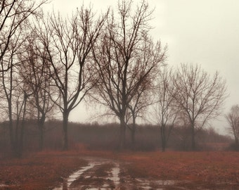 """Landscape photography fog trees brown sepia winter minimal rustic - """"Trees in the mist"""" 8 x 10"""