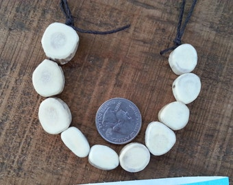 Deer Antler Coin Beads- Strand as Shown- 10 Pieces Lot No. 48671LB