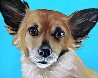 custom painted pet portrait size 12x12 canvas
