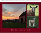2016 Wall Calendar from DreamCatcher Sheep & Fiber Farm