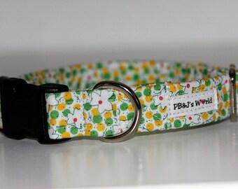 PBJ World Custom Collar...Granny Chic