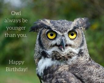 Birthday Owl Photo Greeting Card, 4x5 birthday cards blank inside, funny humor silly, comical joking, happy birthday animal bird