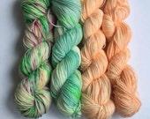 Ledger Combo Merino Set hand dyed knitting yarn