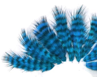 Blue fluffy feathers, 1 Dozen - BLUE Grizzly Rooster Fluff Feathers : 471
