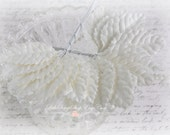 White Mulberry Leaves Set of 20 for Scrapbooking, Cardmaking, Altered Art, Wedding, Mini Album