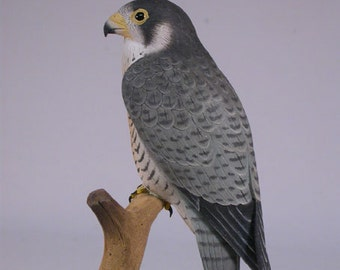 5-1/2 inch Peregrine Falcon Hand Carved Wooden Bird