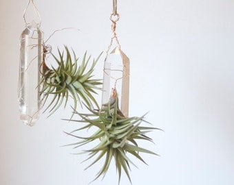 Hanging Air Planter on Quartz Crystal, Airplant Display, Wire Wrapped, Bohemian Decor, Geometric Decor, Gift Under 30