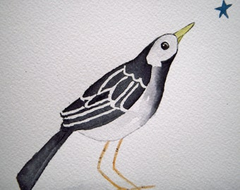 Pied Wagtail, original bird watercolor. black and white, small art, bird and star, simple, children's, nursery art, whimsical