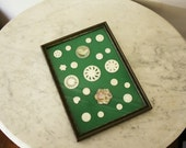 Vintage Framed Button Collection 21 Mother of Pearl Buttons M O P