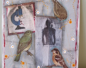 Songbird collage, 2D art, recycled home decor