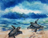 Baby Sea Turtle Watercolor print 11 x 11 or 12 x 12 inches by watercolorsNmore turtles sea life