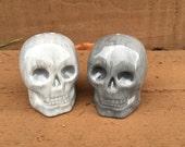 Ceramic Skulls Salt and Pepper Shaker Set - Light and Bright Gray - Halloween Kitchen Decor