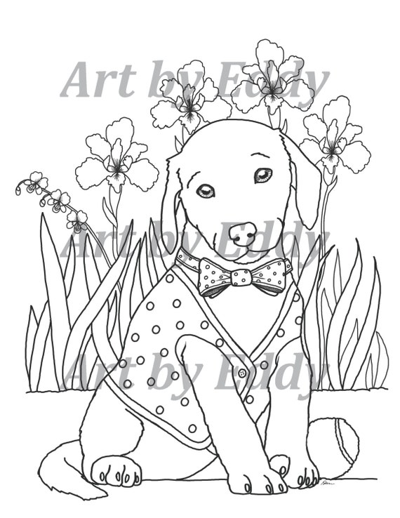 choclate lab coloring pages - photo#24