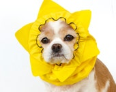 Sun Dog Snood, Stay-Put 3 Rows Elastic Thread, Pet Hat, Long ear covering, Specialty Snood