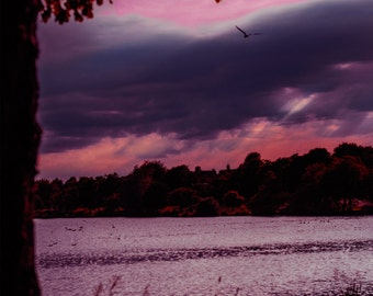 Red Sky At Night Loch Tree Landscape Print Photo Scotland Purple Pink River Water Dark 6x4 6 x 4 Woodland Ethereal