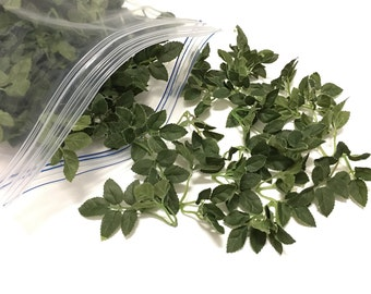 Gallon Bag of Tiny Artificial Rose Leaves - Greenery, Filler, Wedding, Flower Crown, Woodland Crown, Millinery, Hair Accessories
