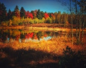 NEW ENGLAND Photography ~ MAINE in Autumn, Fall, Nature, Landscape, Foliage, Leaves, Travel