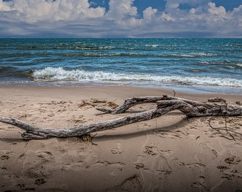Beach Driftwood on Lake Michigan with Waves and a Cloudy Sky by Stony Lake Michigan No.1122 a Fine Art Nautical Seascape Photograph