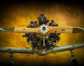 Propeller and Engine of a Trainer Airplane Cornell Monoplane Fairchild PT-23 No.41291 A Fine Art Classic Aviation Photographic Image