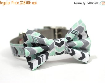 BIG SALE Dog Bowtie, Bow tie Dog Collar- Mint Green and Grey Chevron Stripes