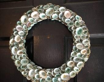 "Aqua Sea Blue Green Limpet Shell Wreath 12""/ Holiday Decor/ Coastal Christmas/ Year Round Door Seashell Wall Decorations Wreaths SEA"