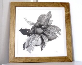Physalis original charcoal drawing, fruit drawing, pencil drawing, black and white art, still life art, food art, kitchen art, fruit art